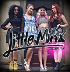 <h5><strong>Little Mix</strong></br>Little Minx</h5>
