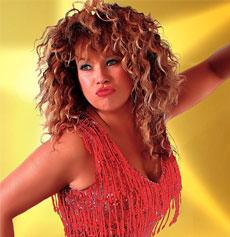 <h5><strong>Tina Turner</strong></br>Totally Tina</h5>
