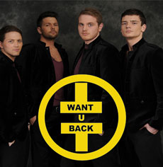 <h5><strong>Take That</strong></br>Want U Back</h5>